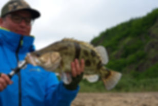 рыба Ауха 2.1.jpg