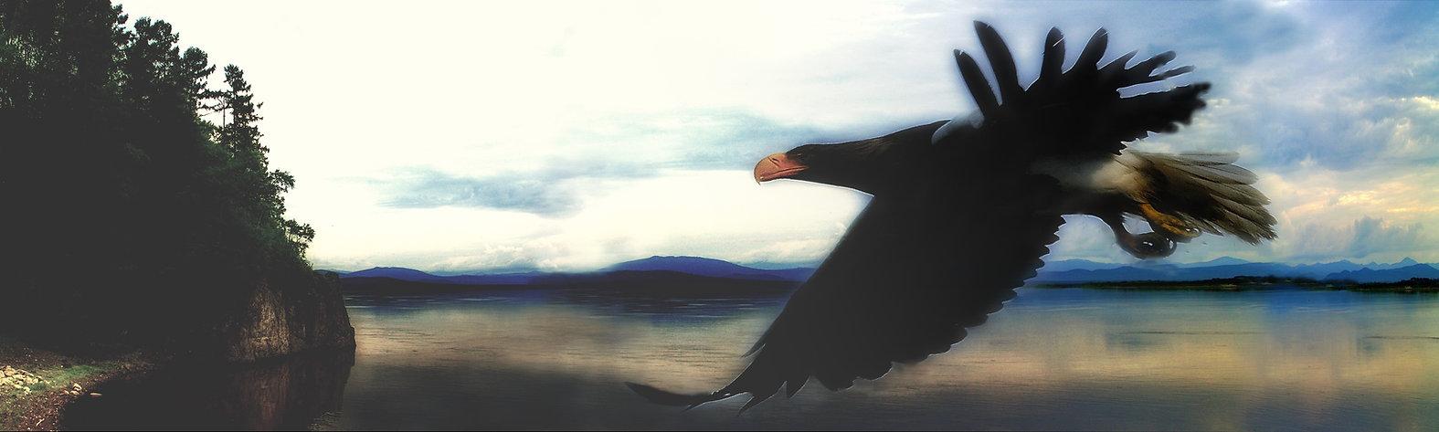 орёл 1.jpg