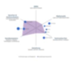 Grafik Berufsprofil ICT-Fachperson.png