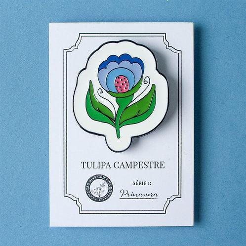 Pin Tulipa Campestre