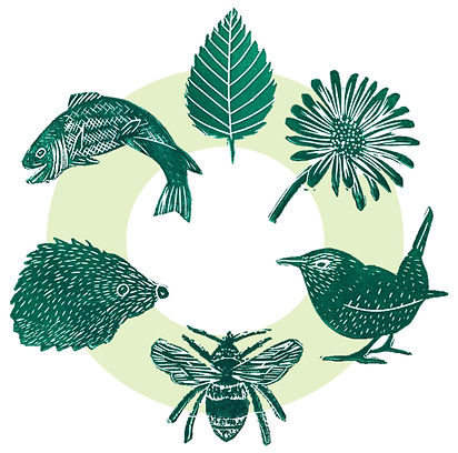 Green Plan Trail Logo.jpg