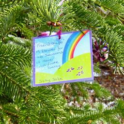 Xmas Tree Sus Woodstock4.jpeg