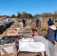 Marston Community Gardening Photos 2019-2021.pptx-5.jpg
