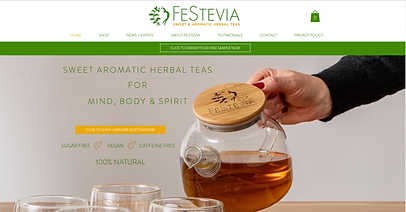 Webworks Studio Portfolio Homepage Image for FESTEVIA.CO.UK