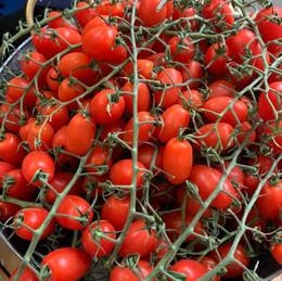 Witney Food Revlution9.jpg