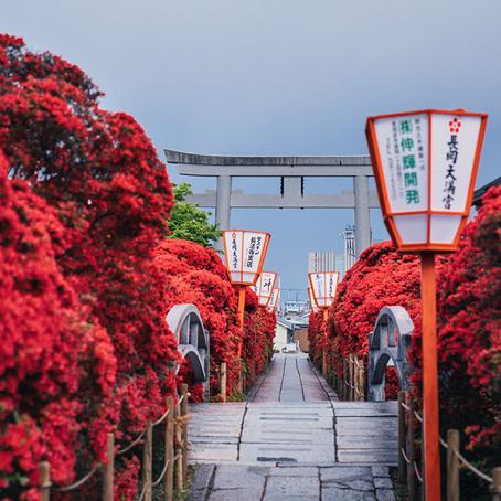 4 estaciones en Kioto
