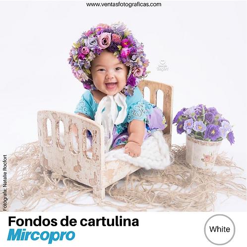 Fondo de Cartulina WHITE