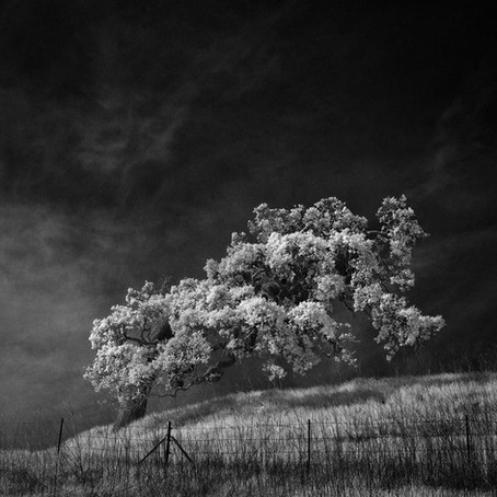 Slices of silence - Nathan Wirth