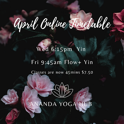 AYH April Online Timetable .png