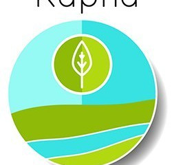 Kapha: Governing Strength + Stability
