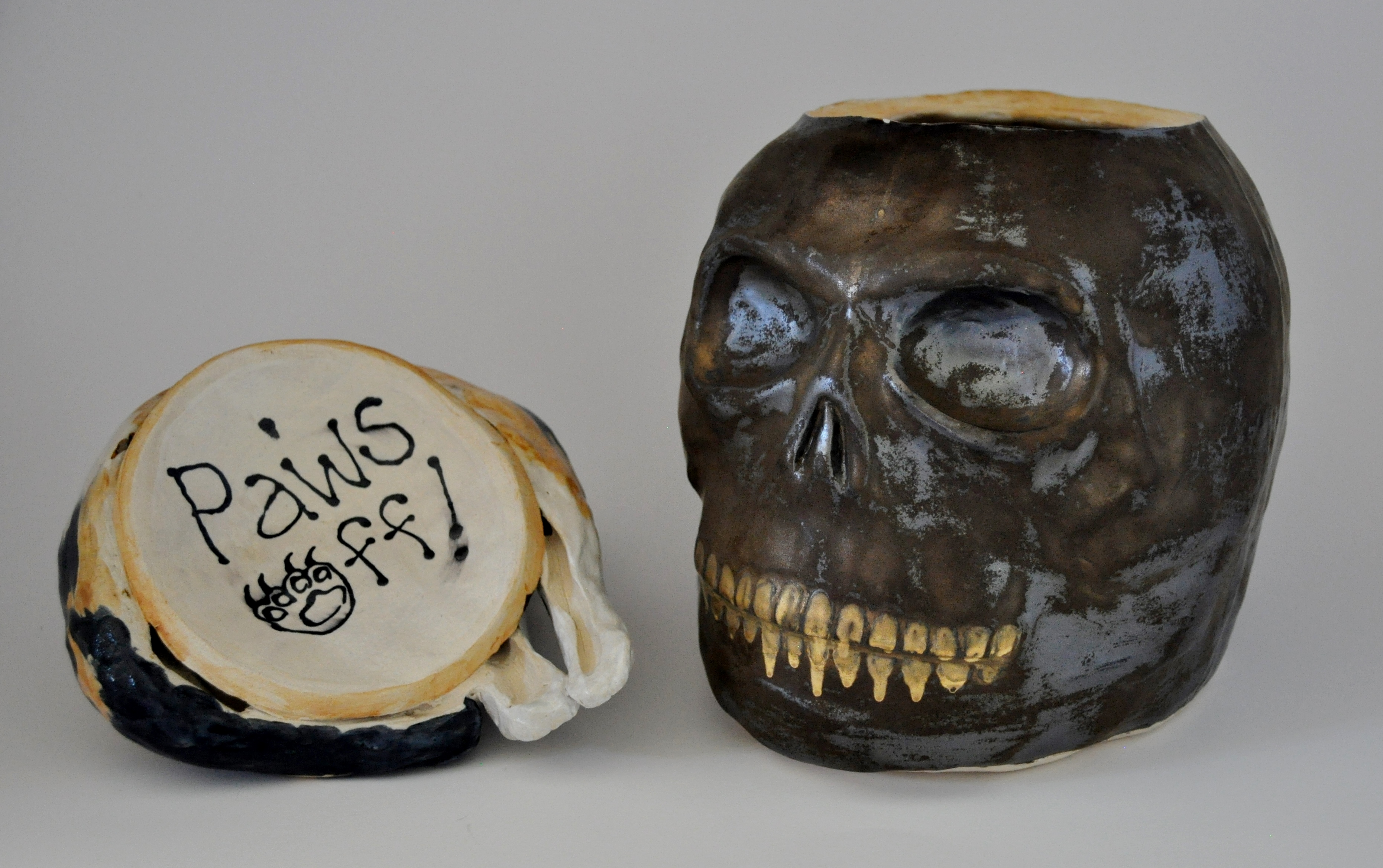 Pussy, Cat Skull-under lid view
