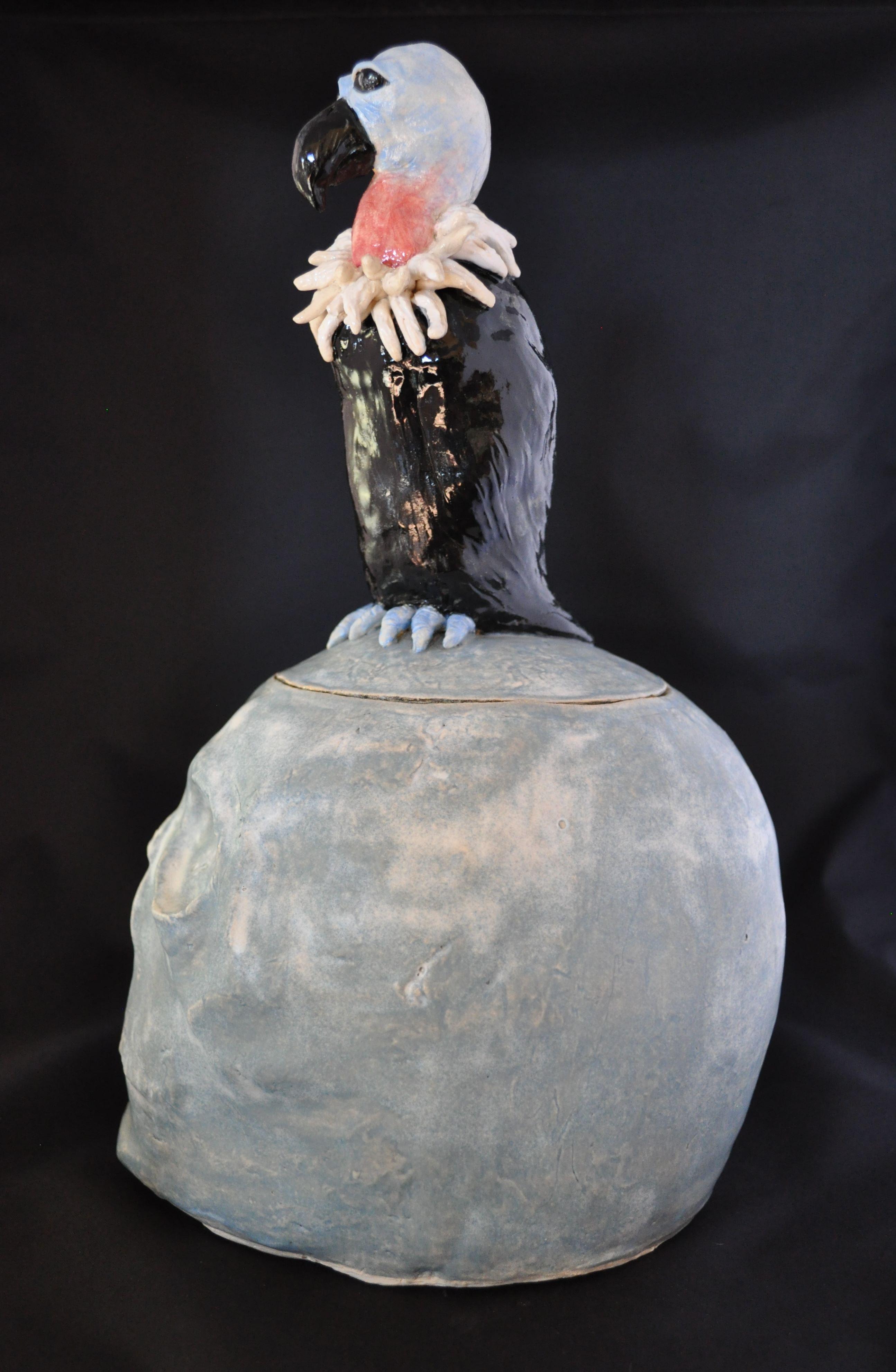 Cookie Vulture-profile