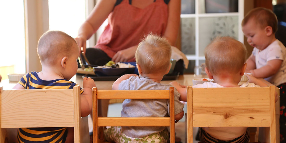 Infant and Toddler Educator Summit