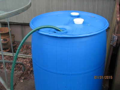 Blue fifty-five gallon drum lined inside for water storage.
