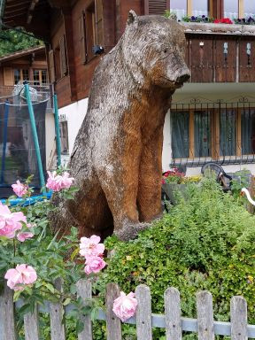 A large bear hovrs over the roses, the bikes and the shrubbery of a Frutigen home garden.