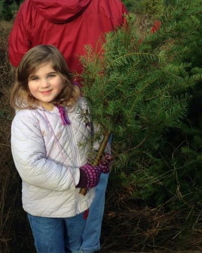 Granddaughter deer carries her own tree.