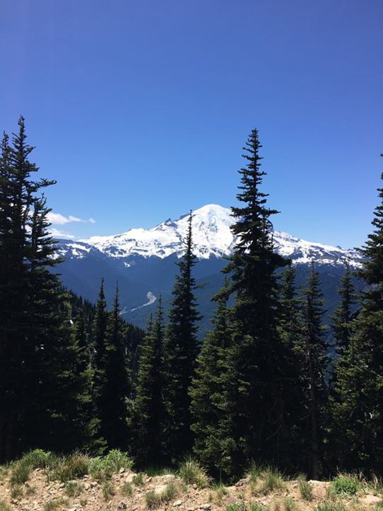 Mount Rainier views