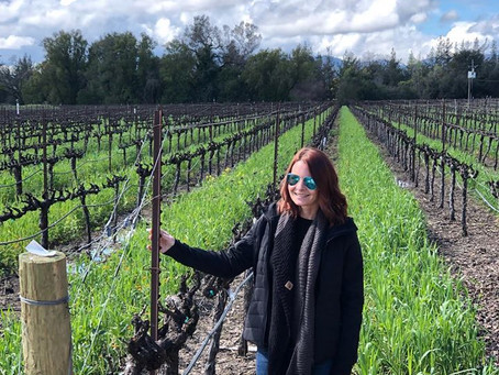 Wine Weekends in Napa March 2019