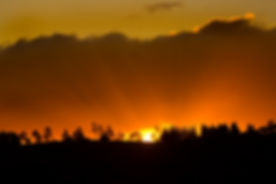 Michael Silver's Sun Image.jpg