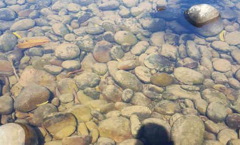 Clear water of Kiulu river