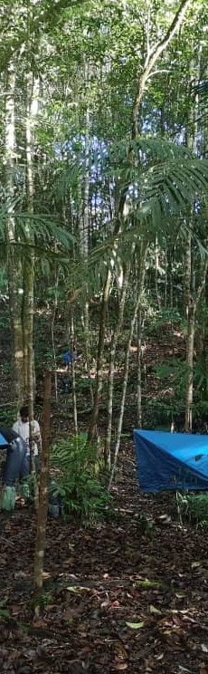 Camp, Tudan Trek
