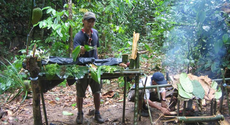 Jungle buffet