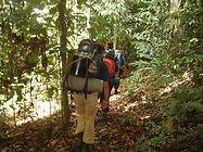 Trekking deep into the Borneo jungle.JPG