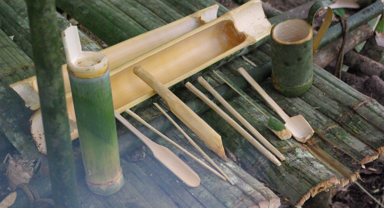 All things bamboo!