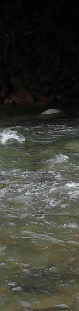 Kedamaian river