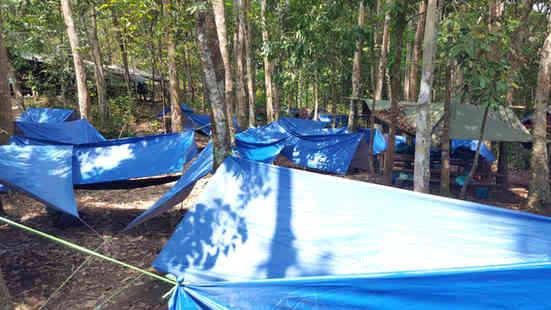 Hammocks at camp