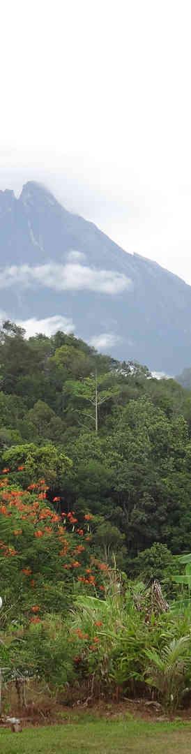 Mt K from Tambatuon