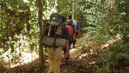 Trekking deep into the Borneo jungle