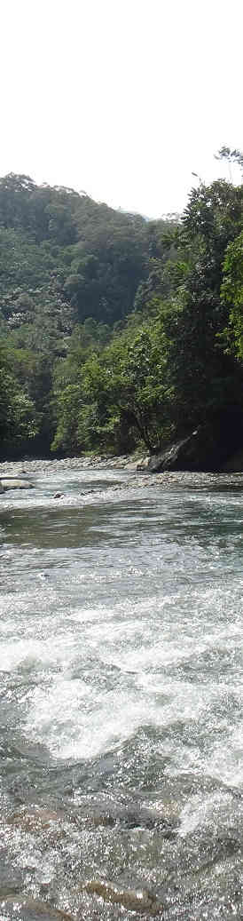 Cool river