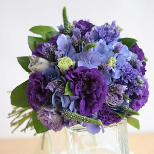 Violet Sensations