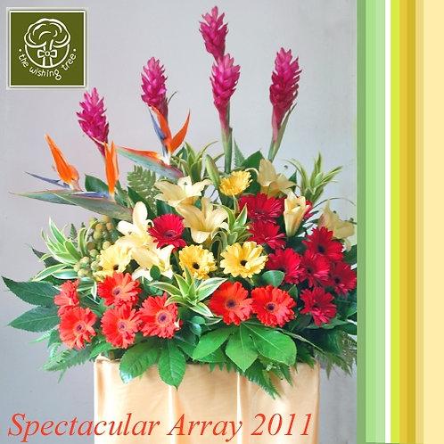 Spectacular Array