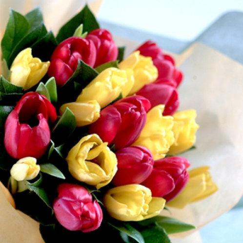 Morocom Blooms
