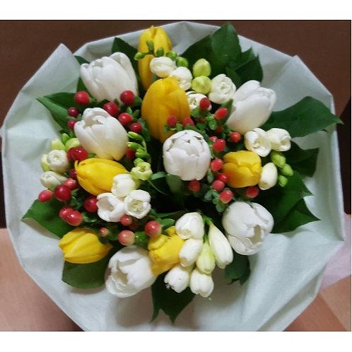 Tulip Zest