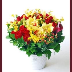 Prosperity Vibrant Potted Bouquet