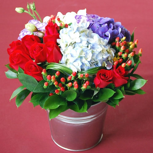Cha Cha Potted Bouquet