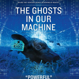 ghosts in our machine