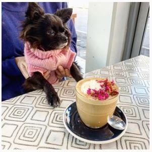 khamsa cafe