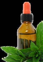 huiles essentielle plantes equilibrenaturopathie