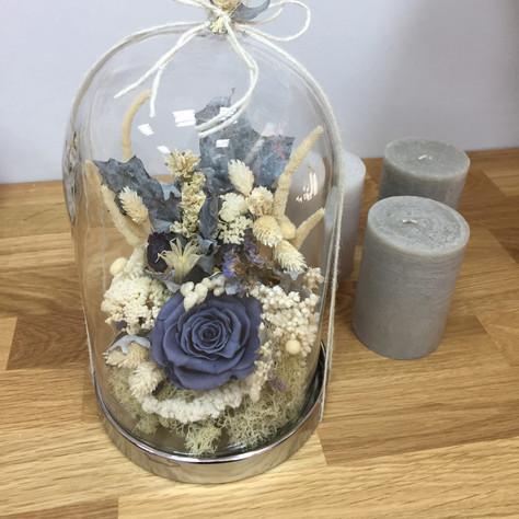 fanus çiçek2