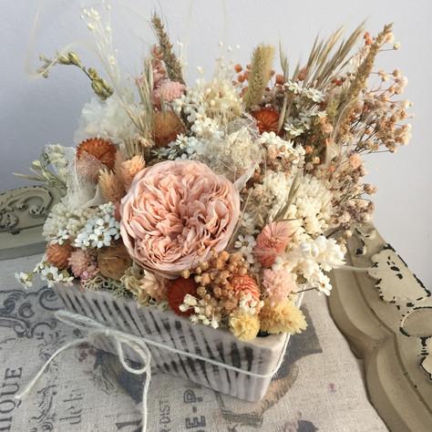 soft saksı çiçek