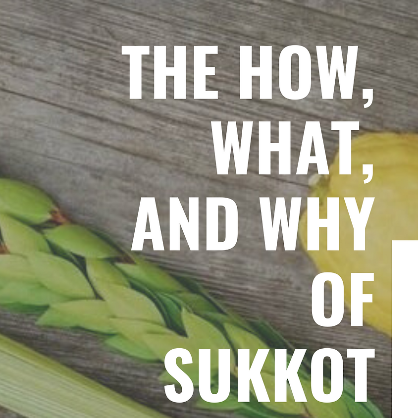 The What, How, and Why of Sukkot