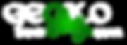 Gecko-Logo-white-on-transparent-1.png