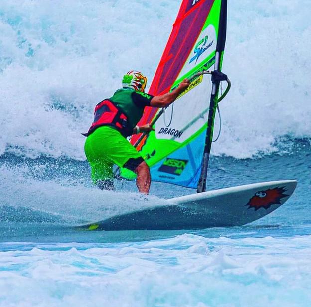 Gecko Surf