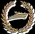 Logo H2O premium.png