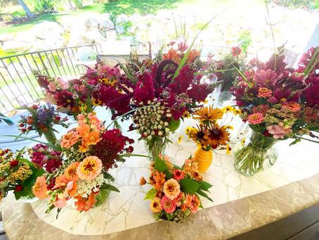 Blooms Brighten Lives in Davis County!