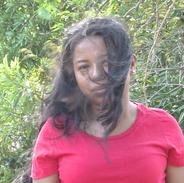 Wind Video